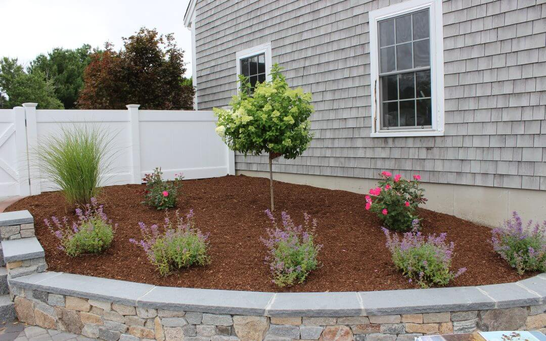 Patio, Granite Steps, Walkway, & Plantings