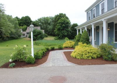 after-plantings-walkway