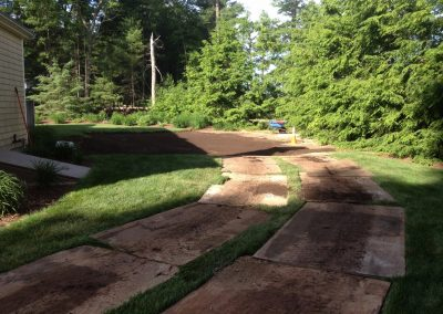 pool-removal-sod-during